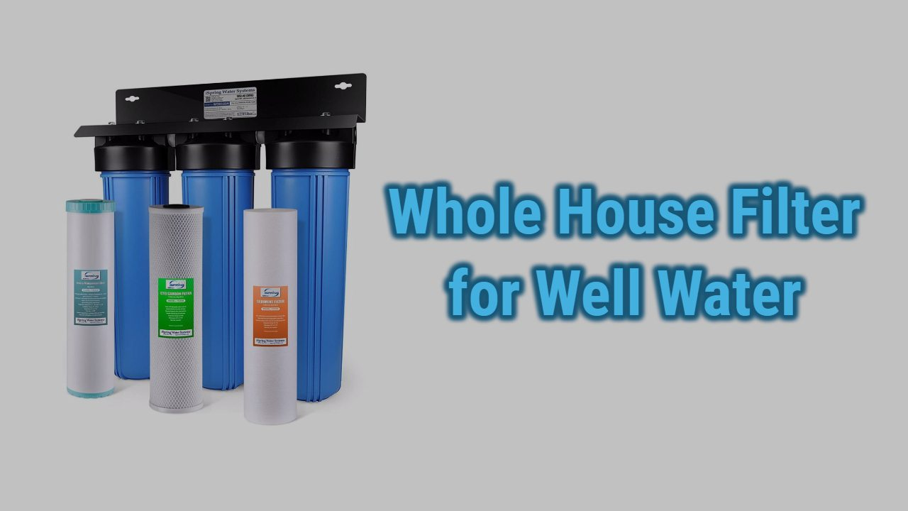 Best Whole House Filter for Well Water Reviews